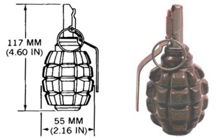 Габариты гранаты Ф-1. /Фото: wikipedia.org