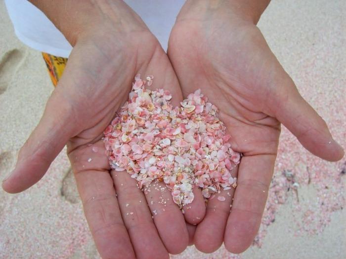 Песок розовый из-за ракушек. /Фото: en-stock4.top