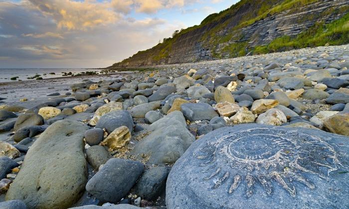 Пляж, который знакомит с древнейшей историей планеты. /Фото: lifeglobe.net