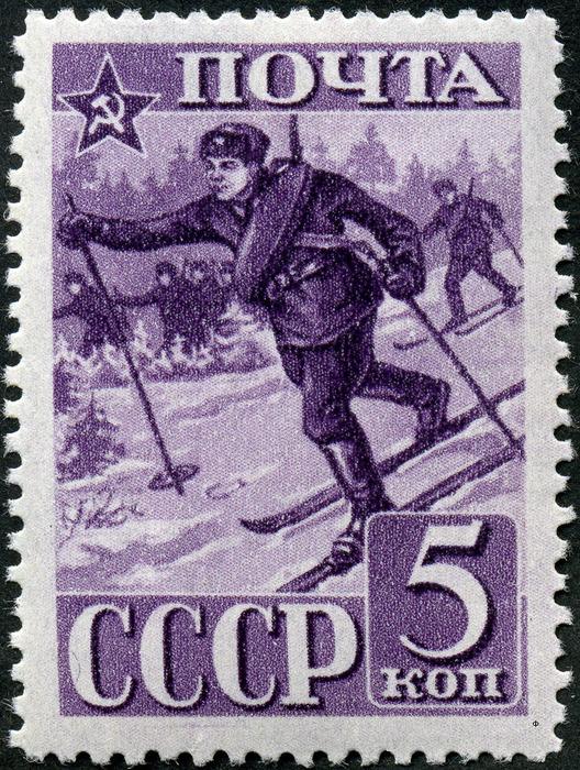 В советской армии было очень много солдат на лыжах. /Фото: wikipedia.org