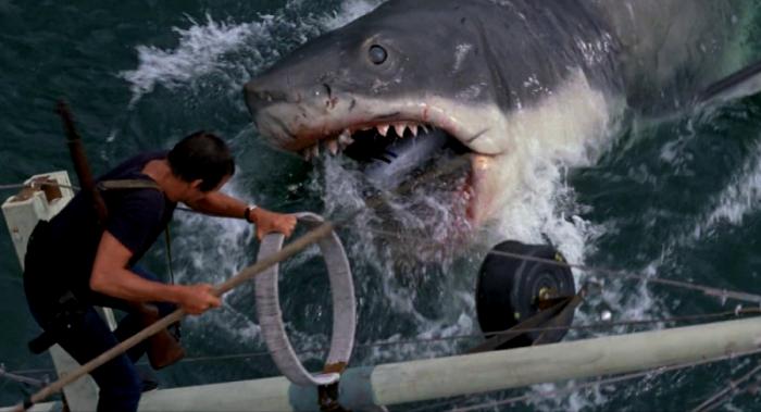 Акулы едят всех подряд разве что в «Челюстях». /Фото: film.ru