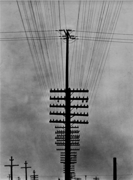 Телеграфный столб - первый разносчик спама. /Фото: artsy.net