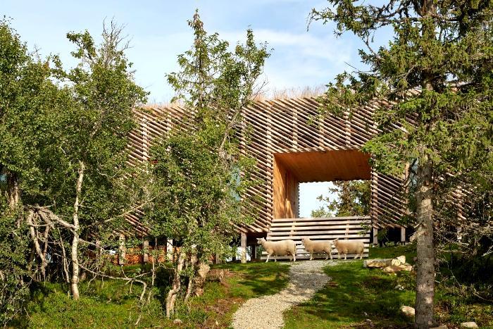 Органический бревенчатый дом в сердце Норвегии. /Фото: divisare.com