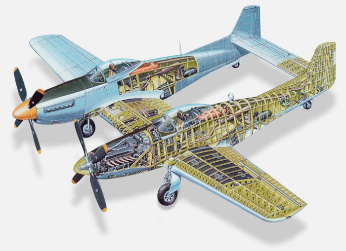 Конструкция сиамского самолета в разрезе. /Фото: public-media.com