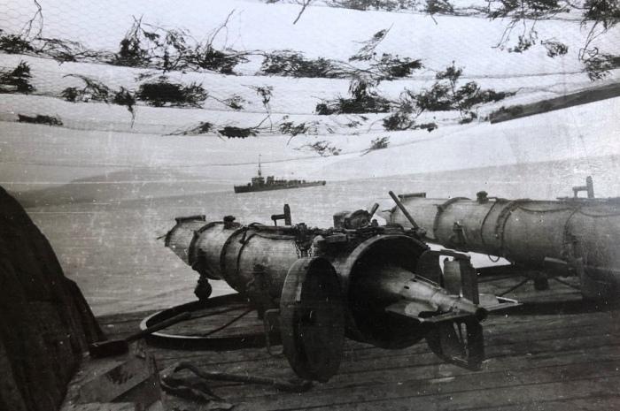 Предположительно, именно такими торпедами планировали вооружить батарею. /Фото: exploration51.net