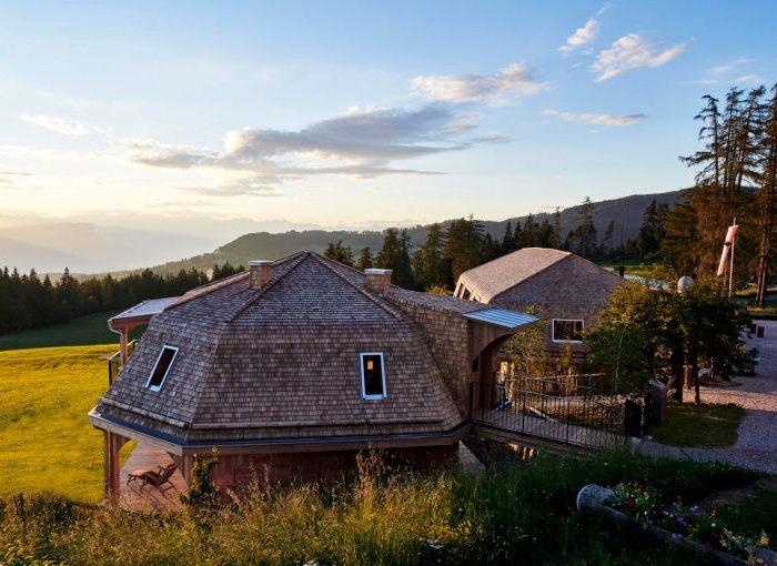 Дома, для строительства которых не вырубили ни одного дерева. /Фото: admagazine.ru
