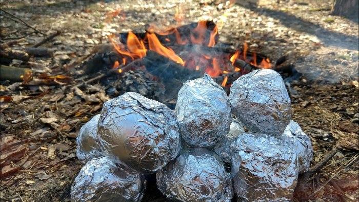 Что может быть вкуснее картошки на костре / Фото: youtube.com