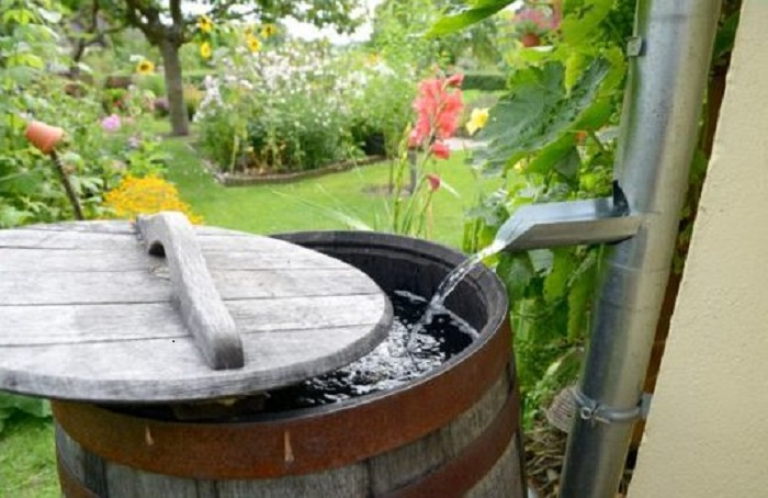 Бочку надо закрывать крышкой для ограничения доступа прямых солнечных лучей / Фото: poradu24.com