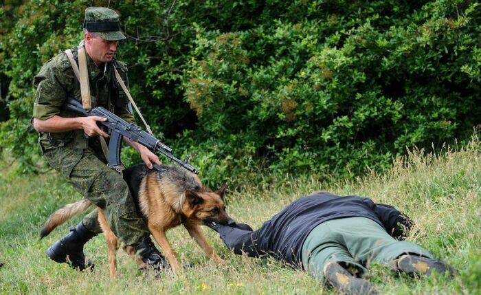 Маломощный пистолет диверсанта не может тягаться с автоматами пограничников / Фото: yuga.ru