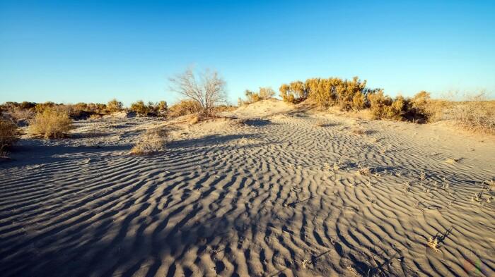 Сейчас на месте водоема степь и пустыня / Фото: classpic.ru