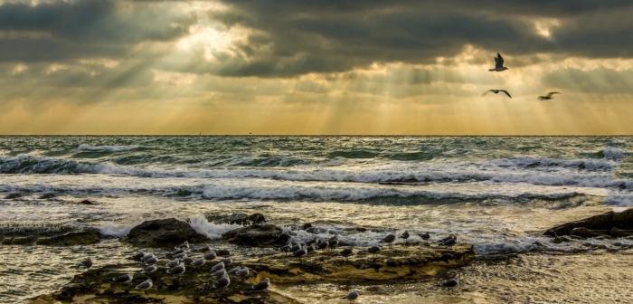 Наблюдается рост уровня воды в Арале при его падении в Каспийском море / Фото: yandex.ua