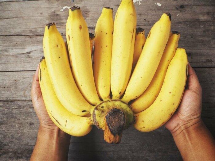 Наиболее популярными и востребованными в Каракасе остаются бананы под названием платано / Фото: ecwid.com