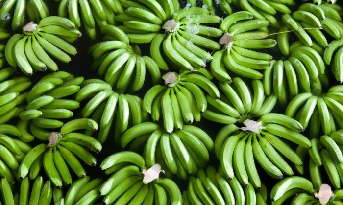 В СССР продавались зеленые бананы / Фото: yaadmarket.com