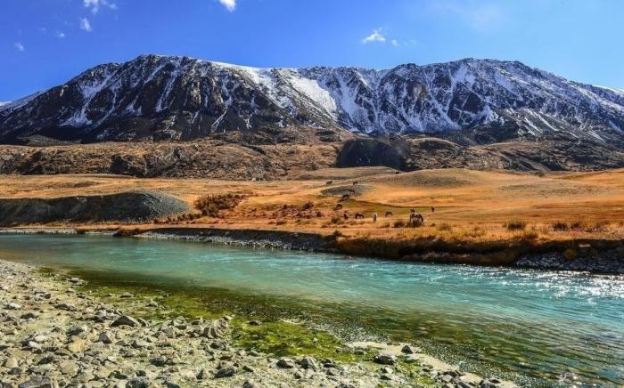 В юго-западной и западной части Монголии находятся горы / Фото: Twitter