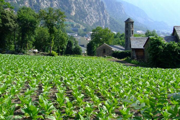 Сельскохозяйственные угодья в Андорре / Фото: tourweek.ru