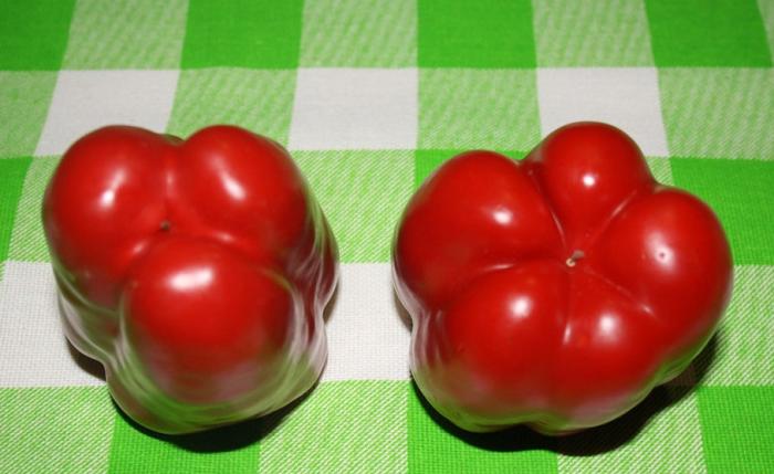 Четырехкамерный перец – «девочка», трехкамерный – «мальчик» / Фото: m.ok.ru