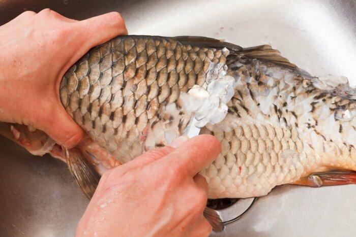 Для человека неопытного процесс чистки рыбы превращается в настоящее серьезное испытание / Фото: hukgear.com