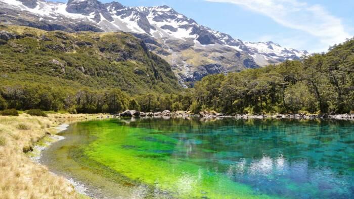 Вода в озере идеально прозрачная, но к ней даже дотрагиваться запрещается / Фото: stuff.co.nz