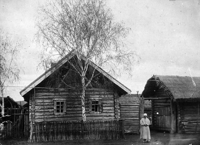 Почему раньше в деревнях сажали в палисаднике деревья, а не цветы и кустарники