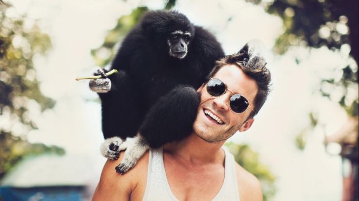 Почему, глядя на дикую обезьяну, не стоит ей улыбаться