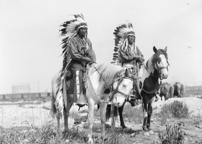 С родных земель индейцев пытались выселить с помощью американских регулярных войск / Фото: liveinternet.ru