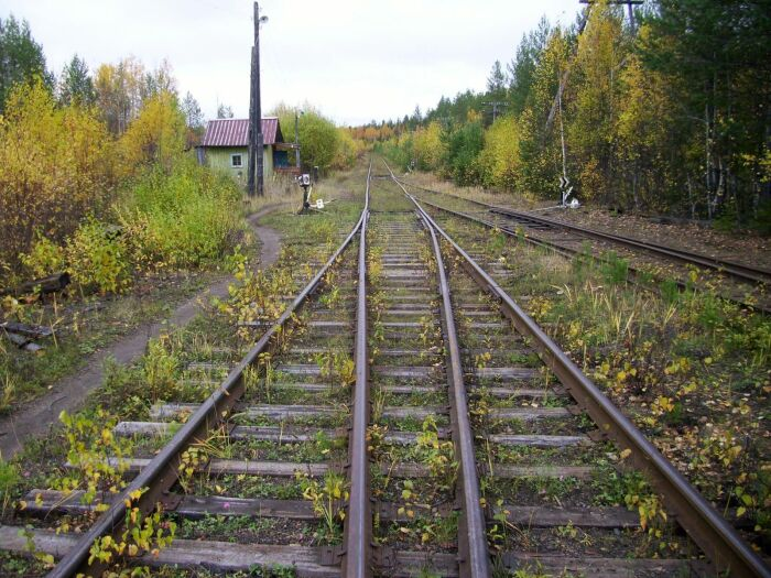 В начале двухтысячных по маршруту Лесная-Крутоборка еще ходили поезда / Фото: rodnaya-vyatka.ru