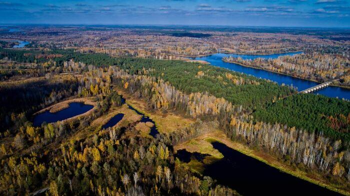 Ученые из Украины о подобном заповеднике мечтали очень давно, но власти на все махали рукой / Фото: kievvlast.com.ua