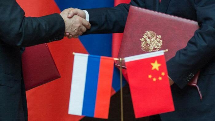 Китай и Россия активно сотрудничают в сфере производства продуктов на основе гриба чага / Фото: apral.ru