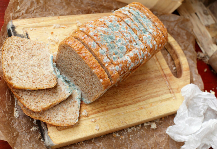 Из-за неправильного хранения хлебобулочные изделия быстро черствеют и обрастают плесенью / Фото: bb.lv
