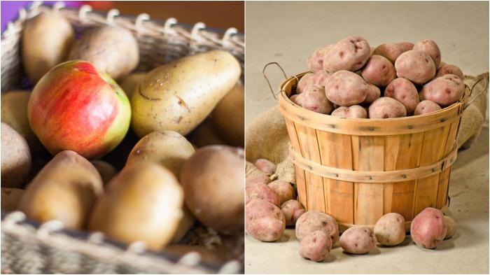 Яблоки выделяют этилен, который замедляет рост картофельных ростков / Фото: prozeny.cz