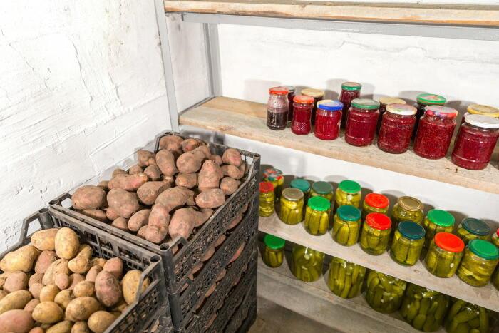 Не у всех есть холодные подвалы, в которых картофель может лежать долгое время без потери внешних и вкусовых характеристик / Фото: design-homes.ru