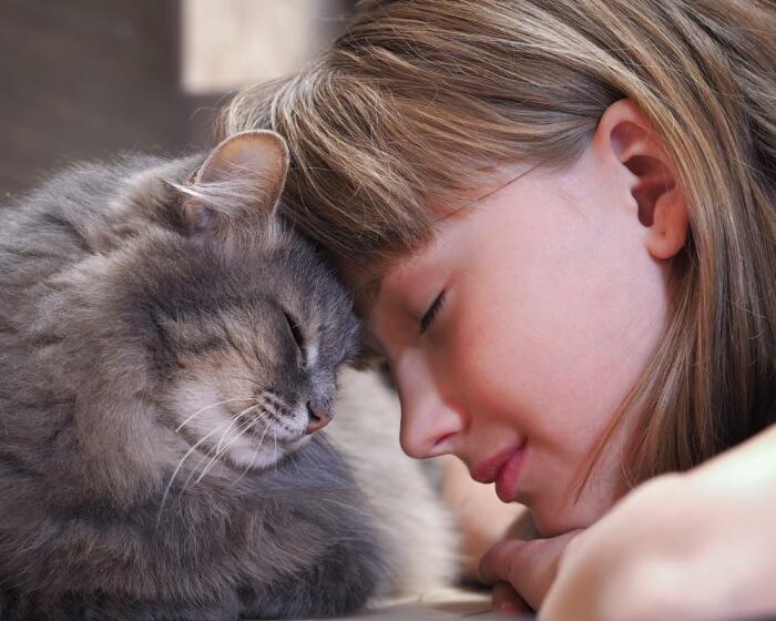 Искренне любите своих пушистых друзей, и они ответят вам взаимностью / Фото: fb.ru