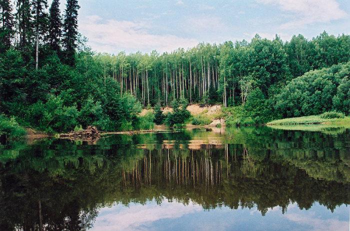 Глухая Вильва - очень красивая река / Фото: veslo.ru