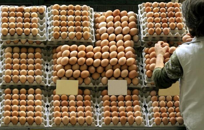 Категория указывает на размер продукта и влияет на его стоимость, но никак не определяет его вкусовые характеристики, качество, срок хранения / Фото: aviculturaindustrial.com.br