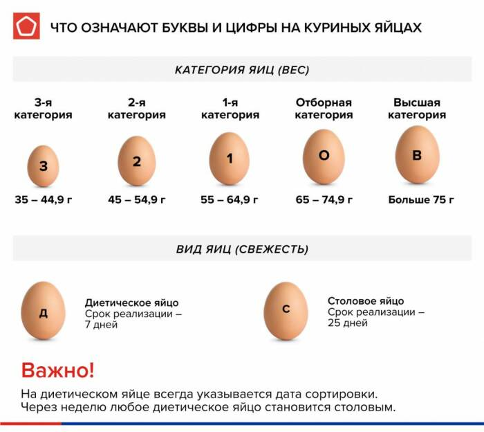 Все яйца, реализуемые в магазинах, имеют маркировку в виде букв «Д» и «С», а также цифр / Фото: rskrf.ru