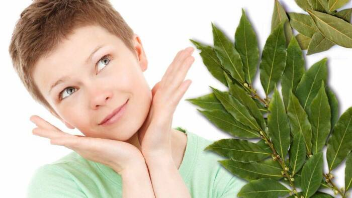 Средства на основе лаврового листа благотворно влияют на кожу лица, шеи и рук / Фото: evrikak.ru