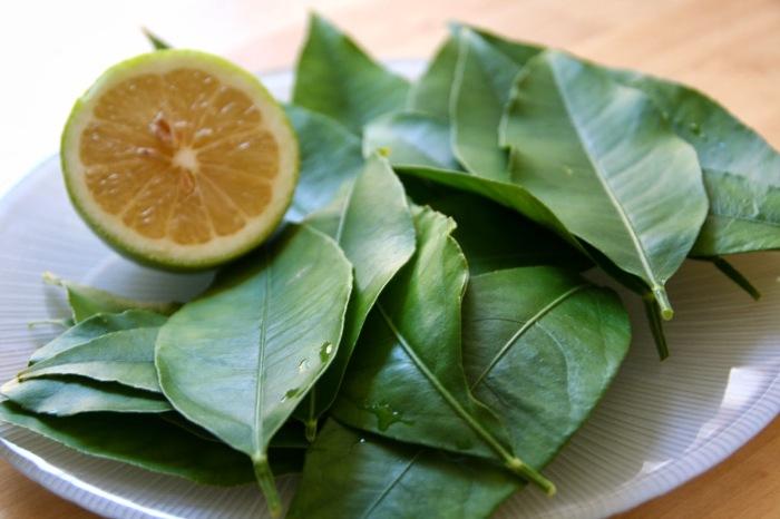 В сочетании с лимоном настой из лаврушки эффективен при оздоровлении волос / Фото: gardenofeaden.blogspot.com