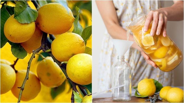 Рецепт изготовления лимонной тряпки простой и доступный / Фото: jennikayne.com