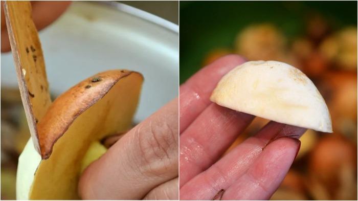 В действительности особой необходимости, да и вообще никакой, в съеме кожицы с грибных шляпок нет / Фото: prigotovim-v-multivarke.ru