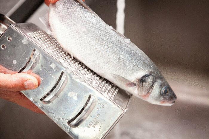 Многие на самой острой и мелкой стороне терки измельчают чеснок или очищают ей рыбную чешую / Фото: yandex.ru