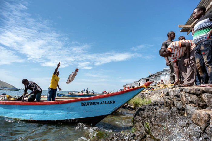 Единственное занятие на Мигинго, приносящее доход - ловля рыбы / Фото: pronedra.ru