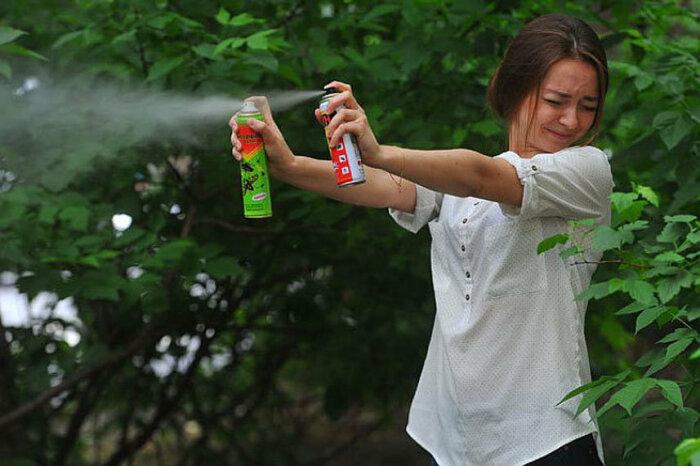 Для уничтожения насекомых в доме или квартире нам не нужны будут дихлофос, фумигаторы либо другие спецсредства / Фото: chel.klop-ek.ru