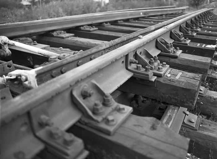 В девятнадцатом веке в Баварии именно таким образом обрабатывали шпалы / Фото: photographer.ru