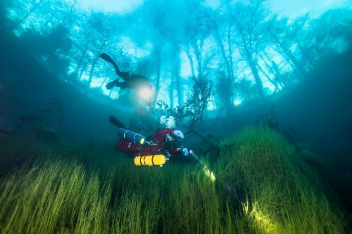 Дно озера состоит из множества расщелин и пещер, уходящих вглубь / Фото: majestus.ru