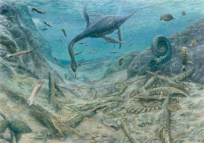 Загадка природы: почему высохло самое крупное за все время существования Земли море