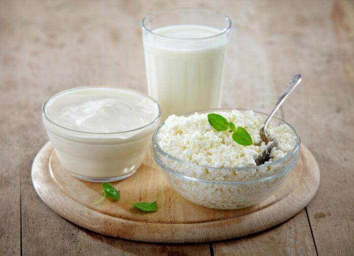 Из кисломолочных продуктов взрослым котам не следует давать только молоко / Фото: dietolog.pl.ua