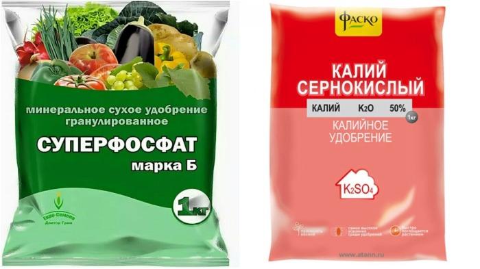 весной следует вносить дополнительно суперфосфат и сернокислый калий / Фото: вхозмагазине.рф
