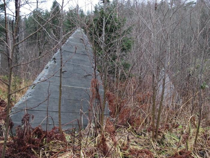 Большую часть сооружений демонтировали, но некоторые остались в лесах / Фото: lenww2.ru