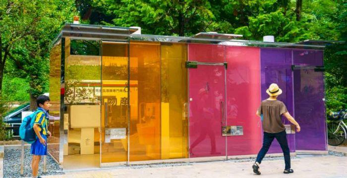 Необычные туалеты помимо прямого назначения призваны выполнять и другие функции / Фото: shtiu.ro