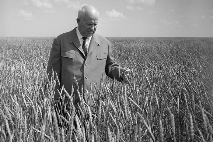 Н. С. Хрущев, генсек ЦК КПСС, в период с 1954 г. по 1965 г. провел 2 серьезные кампании, направленные на освоение целины Сибири и Казахстана и выращиванию кукурузы / Фото: realtribune.ru